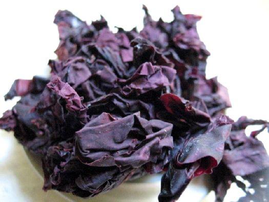 dulse_seaweed-53