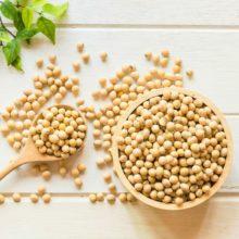 El debate sobre la soja